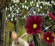 Good Morning May Your Sunday Be Filled With Love