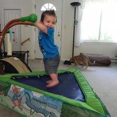 Baby Rocco- Cute lil Guy! https://www.facebook.com/RompyRoo?ref=hl
