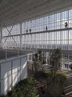 Gallery of Intesa Sanpaolo Office Building / Renzo Piano Building Workshop - 14