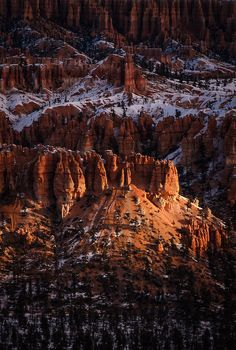 travelingcolors:  First Light at Bryce Canyon | Utah (by Prajit...