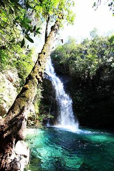 Cachoeira santa barbara - Cavalcante, Goias
