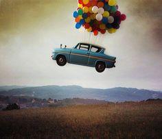 Fly away ...