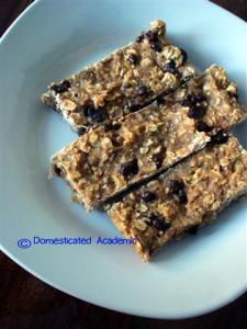 Healthy Breakfast Bars | Domesticated Academic