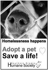 Save a life, ADOPT  www.sohumane.org