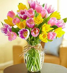 Timeless Tulips® When cheerful tulips are blooming, spring can't be too far behind! The colorful blooms in our hand-designed bouquet are picked fresh, then arranged inside a clear vase tied with raffia to let their bright beauty shine through. It's a timeless favorite for big occasions and just because moments.