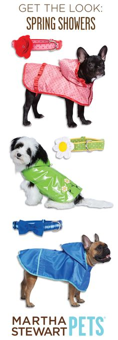 Your pet will be ready for spring showers with our #MarthaStewartPets dog raincoats and coordinating collars! Available only @petsmartcorp