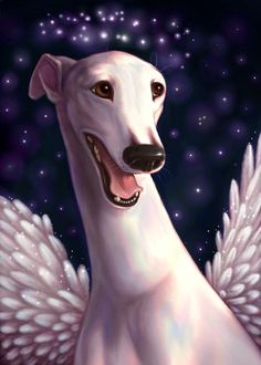 Sweet Smiling White Angel Celestial Greyhound Signed Print