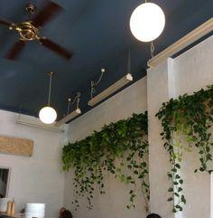Unfamiliar living wall planter ideas tips for 2019 Planting Bulbs In Spring, Spring Bulbs, Modern Canvas Art, Modern Wall Art, Garden Solutions, Long Walls, Garden Journal, Landscape Walls, Pergola Designs