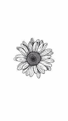 Small Daisy Tattoos Ideas With Meaning - Tattoos - . - small daisy tattoos ideas with meaning – tattoos – - Small Daisy Tattoo, Sunflower Tattoo Small, Sunflower Tattoos, Sunflower Tattoo Design, Daisies Tattoo, White Daisy Tattoo, Daisy Tattoo Designs, White Sunflower, Sunflower Drawing