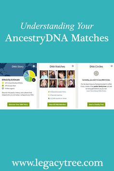 Studying one's DNA results can yield a wealth of information and clues about one's family. Learn how to use your AncestryDNA test results for genealogy. Genealogy Websites, Ancestry Dna, Genealogy Research, Family Genealogy, Genealogy Humor, Genealogy Chart, Dna Research, Family Research, Dna Tree