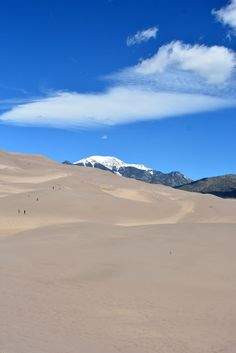 Mille Fiori Favoriti: The Great Sand Dunes National Park, Part Two