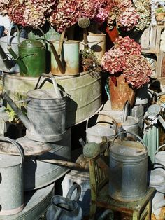 lovely old watering cans