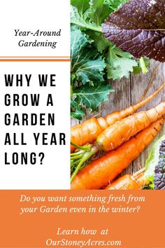 Year-Round Gardening is the simple process of extending your garden harvesting season to 365 days a year. #gardening #backyardgardening #vegetablegardening
