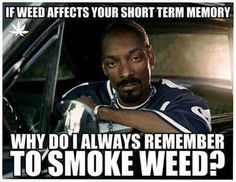 If weed affects your short term memory. Laugh your self out with various memes that we collected around the internet. Funny Weed Memes, Weed Humor, 420 Memes, Funny Quotes, Top Quotes, It's Funny, Qoutes, Cannabis, Rapper