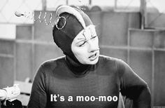 The Official I Love Lucy/Lucille Ball Gif. Love it! William Frawley, I Love Lucy Show, Vivian Vance, Lucy And Ricky, Desi Arnaz, The Lone Ranger, Old Movie Stars, Old Shows, Lucille Ball