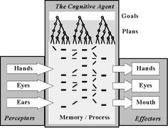 The Omar Cognitive Model