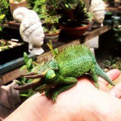 Prehistoric Jackson chameleon