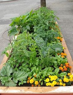 A small space, raised bed vegetable gardens for a patio -- how to build