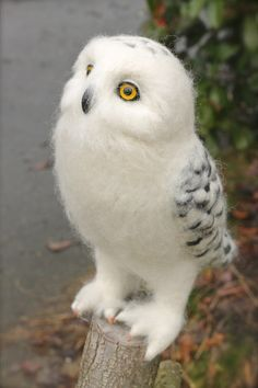 Better picture of my needle felted Snowy Owl, Odin. He is 10 inches tall and a little over 10 inches long. my biggest needle felt project yet. Cute Baby Owl, Baby Owls, Snowy Owl, Needle Felting, Felt Art, Stuffed Owl, Birds, Pets, Animals