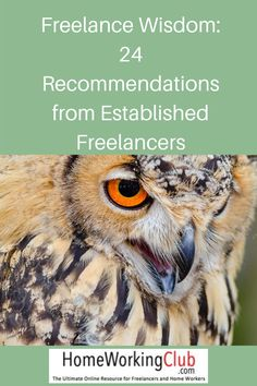"""In our recent survey, we asked our freelancer respondents to tell us the one key piece of advice they would give to an aspiring freelancer. They did not disappoint!The replies form a mini """"freelance start up guide"""" that anyone looking to take their first steps in this exciting world would be lucky to receive."""