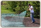 Hydroseeding is becoming a popular means of planting grass due to its relative ease of use, cost and effectiveness. Hydroseeding is an inexpensive process of spraying a specially mixed slurry comprising of water, seed, mulch, fertilizer plus a binder all in just one operation. Hydroseeding is not the instant lawn that you get with sod, but with patience you will have a stronger, lush lawn.