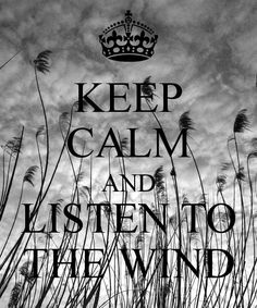 Reposted from ( - Keep calm & listen to the wind. Keep Calm Posters, Keep Calm Quotes, Me Quotes, Windy Weather, Windy Day, Weather Quotes, Keep Calm Signs, Keep Calm And Love, Quote Of The Day