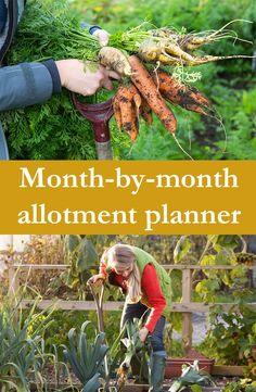 Need some allotment ideas? What should you plant and when is the best time? Here's a month-by-month allotment planner to help you make the most of your little slice of gardening heaven. Eco Garden, Vegetable Garden Design, Fruit Garden, Garden Beds, Garden Trellis, Allotment Design, Allotment Gardening, Container Gardening, Gardening For Beginners