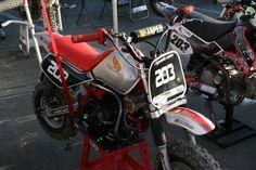 Racing Honda z50r