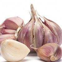 Garlic Reduces Severity of Colds & Flu and it's delicious! Easy Weight Loss, Healthy Weight Loss, Lose Weight, Reduce Weight, Get Healthy, Healthy Life, Beautiful Fruits, Cooking Recipes, Healthy Recipes