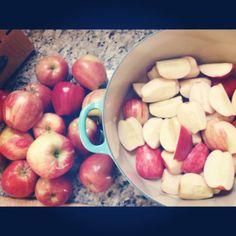 Homemade Applesauce Recipe - Sheyb