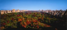 Yup thats the view from the Ritz Carlton Central Park!