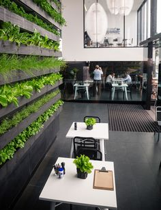 Everything you need to know about living walls. This type of system requires a qualified green wall professional who will select the correct plants, set up an integrated watering and drainage system and water-proof the backing wall.