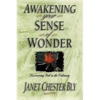 Awakening Your Sense of Wonder. . .finding God in the ordinary. . .a book by author Janet Chester Bly.