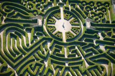 What gorgeous design. I have to keep reminding myself that this is nature under control of a gardener, not an abstract work of art. #maze
