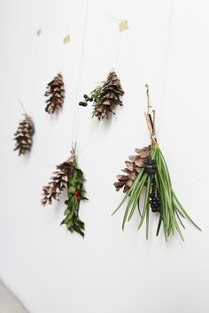 erin boyle - tiny wall swags : pinecones . berries . evergreen . twine