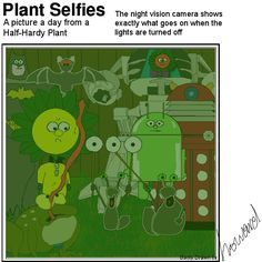 What goes on in Plant's garden at night? Plant Cartoon, Plant Lighting, Hardy Plants, What Goes On, Night Vision, To Go, Adventure, Day, Garden