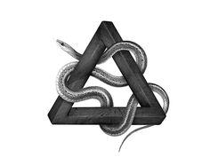 Illusive snakes on Behance