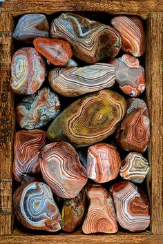 Michael's box o' Lakers good collections Agate