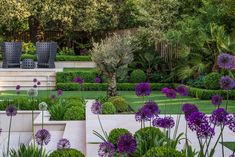 Kate Gould Gardens – Contemporary Garden Design Twickenham – Famous Last Words Back Garden Design, Garden Landscape Design, Contemporary Garden Design, Contemporary Landscape, Modern Design, Small Backyard Patio, Backyard Landscaping, Back Gardens, Outdoor Gardens