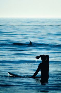 △ the best way to view our friends. please do not visit captured dolphins in hotel settings or sea world theme parks.