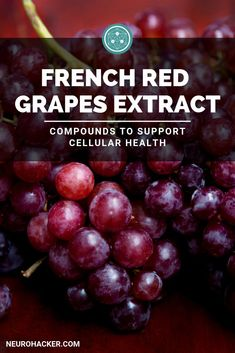 BioVin® is a premium quality grape extract made from the juice, seeds, and skins of red grapes grown in France. It's rich in both trans-resveratrol and grape polyphenols. Healthy Brain, Healthy Aging, Brain Food, Health Heal, Brain Health, Health And Wellness, Brain Connections, Cellular Energy