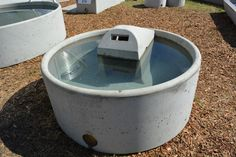 5ft Concrete Water Trough — Concrete Products in Kyogle, NSW Water Trough, Garden Beds, Make And Sell, Water Features, Concrete, Cattle, Outdoor Decor, Products, Drinking Fountain