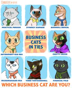 ChaosLife: Business Cats In Ties #webcomic by A. Stiffler