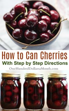 Canning 101 – How to Can Cherries – One Hundred Dollars a Month How to Can Cherries, Recipes for Canning Cherries, Cherry Recipes, Canning Recipes, Canned Cherries Cherry Recipes Canning, Home Canning Recipes, Canning Tips, Jam Recipes, Fruit Recipes, Cooker Recipes, Easy Canning, Canning Cherry Pie Filling, Recipies