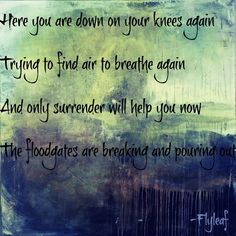 Flyleaf - Again Song Memes, Song Lyric Quotes, Music Lyrics, Music Quotes, Music Love, Music Is Life, My Music, Plus Size Online, Music Theater