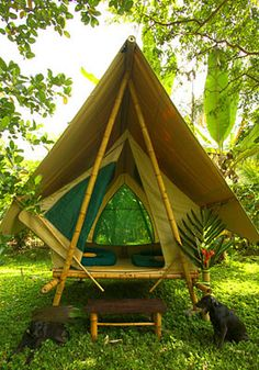 Finca Exotica Jungle Tents and Cabins Carate, Costa Rica (via Beautiful tropical cabin and tent on Costa Rica rainforest beach)