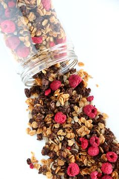 Skinny sugar-free cocoa raspberry granola for healthy mornings. Naturally vegan, it also makes a crunchy snack to satisfy your sweet tooth when a chocolate craving hits. Cocoa Recipes, Dog Food Recipes, Brunch Recipes, Vegan Recipes, Granola Brands, Sugar Free Granola, Toasted Coconut, Unsweetened Cocoa, Vegane Rezepte