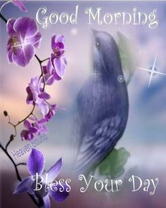 Good Morning,   Bless Your Day,