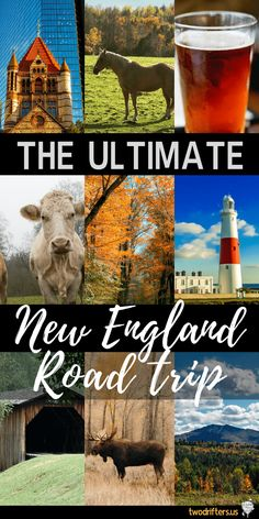Six beautiful states. One amazing road trip. This mega New England road trip itinerary will help you visit all of the top spots throughout the region.