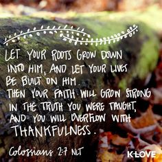 Then your faith will grow strong in the truth you were taught, and you will overflow with thankfulness. Colossians 2:7